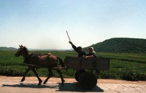 albanian-transport